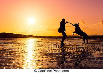 vibrante, cores, cão, silhuetas, hipster, durante, menina, tocando, praia, pôr do sol