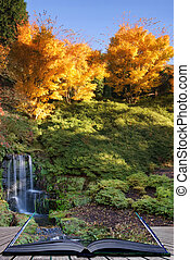 vibrante, Outono, impressionante, Cachoeira, Conceitual, livro, paisagem