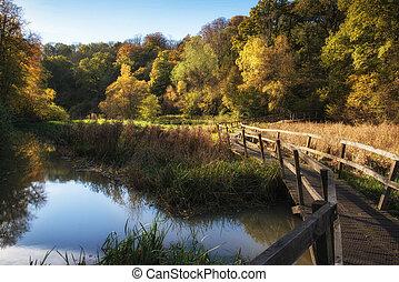 vibrante, sobre, lago, Outono, passarela, impressionante, paisagem