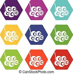 viburnum, ramo, icona, set, colorare, hexahedron