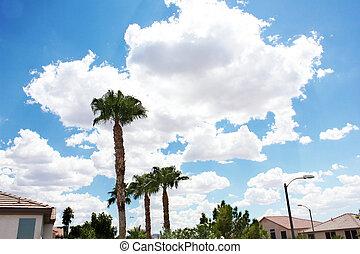 vicinato residenziale, deserto