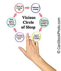 Vicious Circle of Sleep