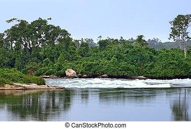 Victoria Nile - waterside scenery showing the Victoria Nile...