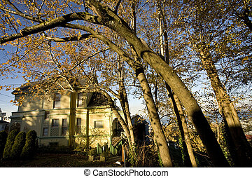 Victorian Home and Cork Elms - Beautiful Victorian home...