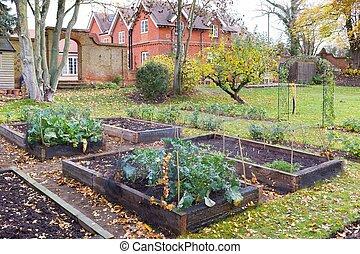 Victorian vegetable garden UK in Autumn