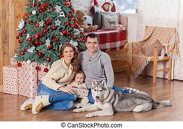 vidám család, noha, kutya, közül, héjas, közel, karácsonyfa
