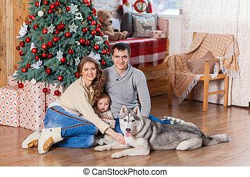 vidám család, noha, kutya, közel, karácsonyfa