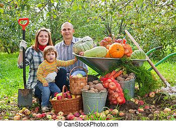 vidám család, noha, növényi, betakarít
