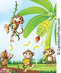 vidám, majmok, közel, a, banán berendezés