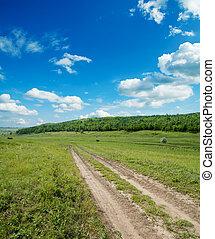 vidéki út, alatt, cloudy ég, noha, fa