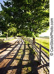 vidéki út