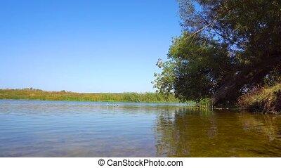 vidéki, kilátás, közül, folyó