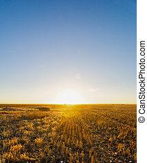 vidéki, napnyugta