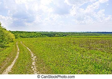 vidéki, nyár, táj, noha, talaj, út