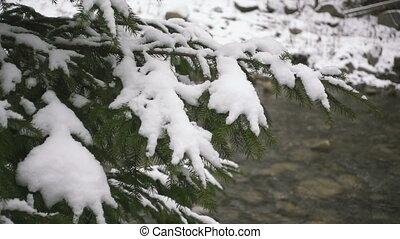 vidéki, parkosít., boldog, új, year., fagyasztott, nagyon,...
