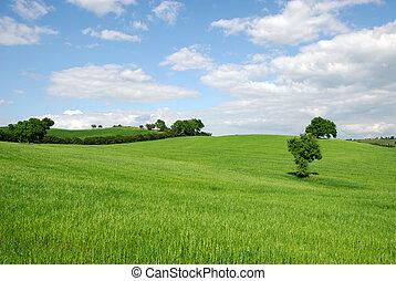 vidéki táj, dombos