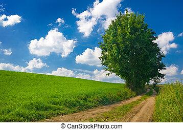 vidéki táj, nézet.