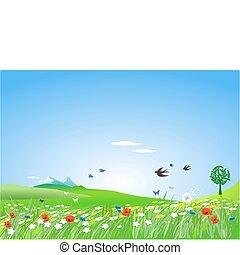 vidéki táj, springlike