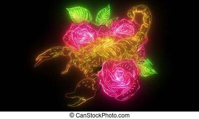 vidéo, scorpion, roses, couleur, -