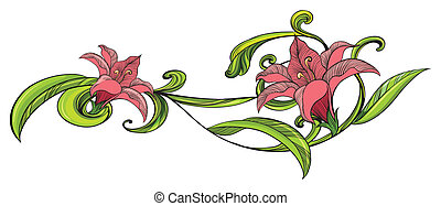 vid, flor, frontera