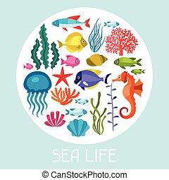 vida, conjunto, iconos, animals., objetos, mar, marina