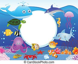 vida de mar, con, muestra en blanco