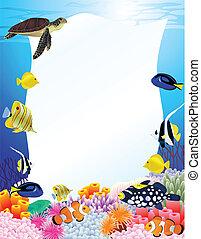 vida de mar, plano de fondo, con, muestra en blanco