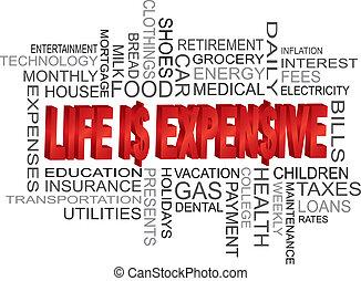 vida, es, costoso, palabra, nube
