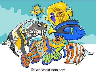 vida, grupo, mar, caracteres, pez, tropical, animal