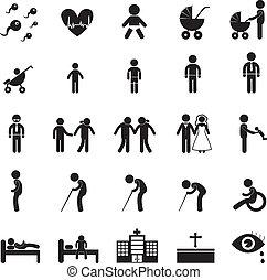 vida, humano, icono