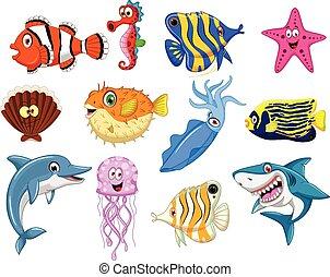vida, mar, caricatura, colección