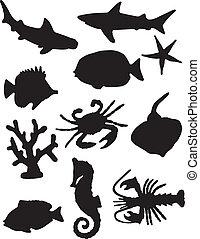 vida mar, silhuetas