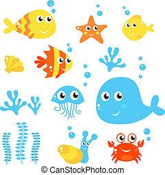 vida marina, -, mar, y, peces, colección, aislado, blanco