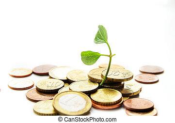 vida, moedas, pilha, crescendo, novo, euro
