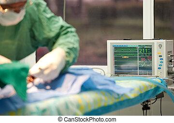 vida, monitor, foco, gato, debajo, anestesia