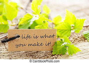 vida, que, fazer, aquilo, etiqueta, tu