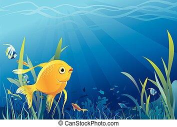 vida subaquática, peixe, ouro, -, vetorial
