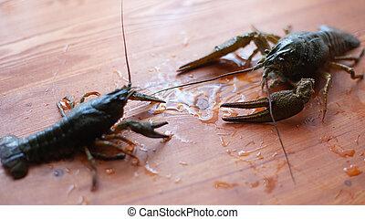 vida, tabla, cangrejo río, de madera, batalla