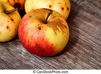 vida, todavía, manzana, rojo