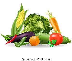 vida, todavía, vegetales, ilustración