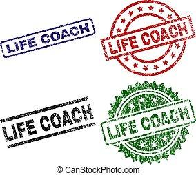 vida, treinador, grunge, selo, selos, textured
