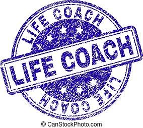 vida, treinador, grunge, selo, textured, selo