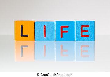 vida, -, um, inscrição, de, crianças, blocos