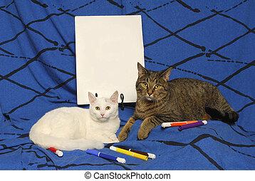 vide, affiche, chats, deux, signe