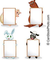 vide, animaux, whiteboards, quatre