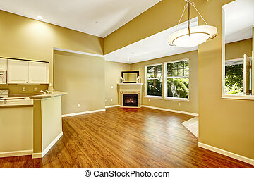 vide, fireplac, plancher, appartement, plan., vivant, ouvert, salle