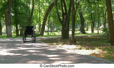 vide, gauche, parc, fauteuil roulant