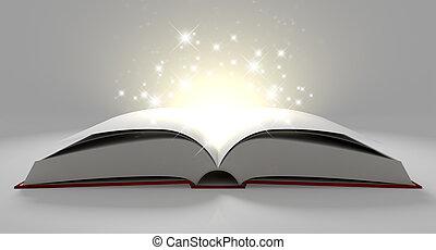 vide, paginé, magique, livre