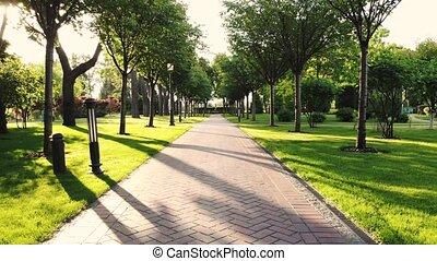 vide, parc, alley., en mouvement, en avant!, par