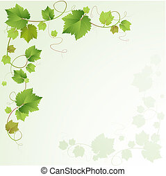 videira, fundo, uvas